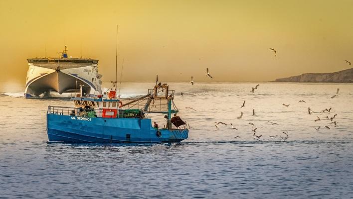 Licenciatura en producción pesquera
